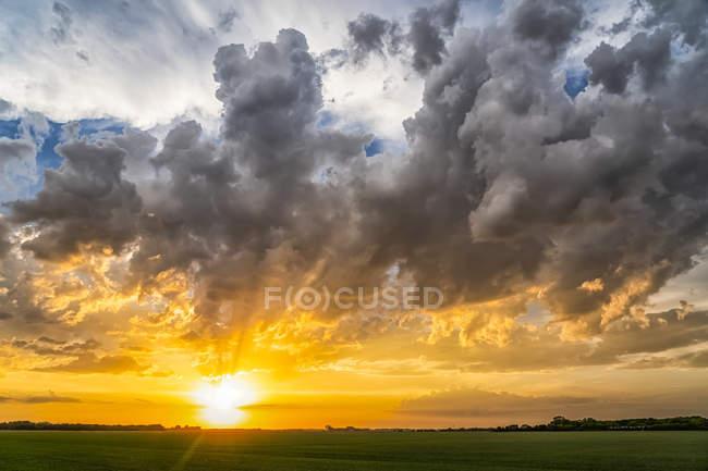Coucher de soleil doré brillant sur la prairie plate ; Val Marie, Saskatchewan, Canada — Photo de stock