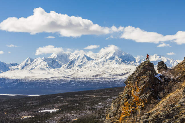 A hiker standing atop a rock outcropping on Donnelly Dome while taking in the view of Mount Moffit and the Alaska Range; Alaska, United States of America — Stock Photo