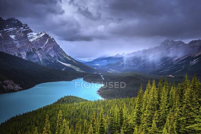 Pluie sur le lac Peyto, parc national Banff ; Alberta, Canada — Photo de stock