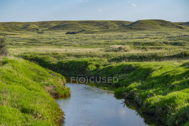 Lush green grass on rolling hills and a tranquil creek in Grasslands National Park; Val Marie, Saskatchewan, Canada — Stock Photo