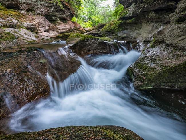 Cataratas y un río tranquilo en un bosque; San Juan, New Brunswick, Canadá. - foto de stock