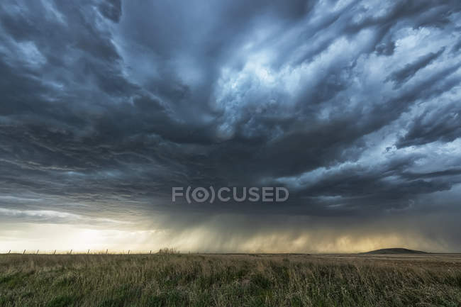 Piogge in lontananza sulle praterie sotto minacciose nubi di tempesta; Saskatchewan, Canada — Foto stock