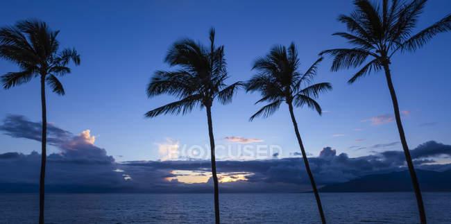 Kamaole One and Two beaches, Kamaole Beach Park; Kihei, Maui, Hawaii, Estados Unidos de América - foto de stock