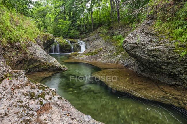 Cascada y un tranquilo arroyo en un bosque; Saint John, New Brunswick, Canadá - foto de stock