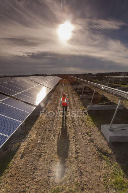 Power engineer at solar photovoltaic array — Stock Photo