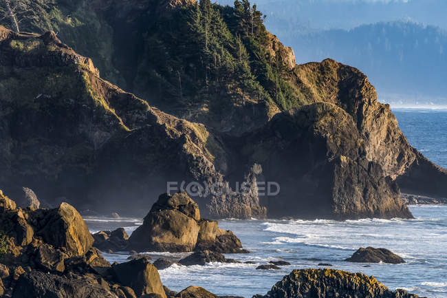 Steep cliffs and dense forest characterize the Oregon Coast at Ecola State Park; Cannon Beach, Oregon, United States of America — Stock Photo