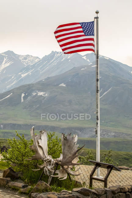 American Flag flys at the Eielson Visitor Center, Alaska, United States of America — стокове фото