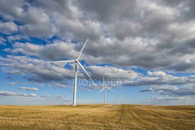 Wind turbines on a vast field of farmland under a cloudy sky; Saskatchewan, Canada — Stock Photo