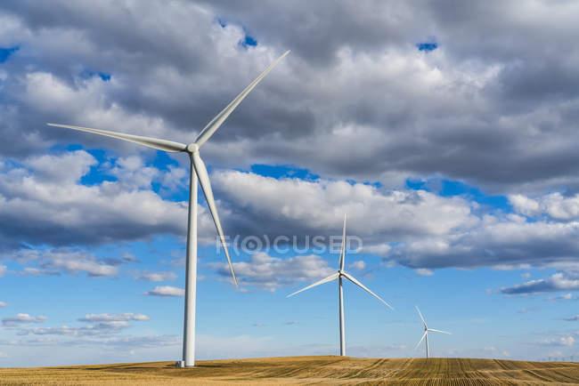 Turbinas eólicas em um vasto campo de terras agrícolas sob um céu nublado; Saskatchewan, Canadá — Fotografia de Stock