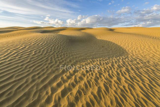 Surface de sable ondulé par l'érosion éolienne, Réserve écologique des Grandes collines de sable ; Val Marie, Saskatchewan, Canada — Photo de stock