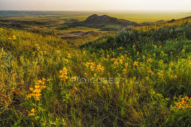 Scenic view of vast landscape stretching to the horizon — Stock Photo