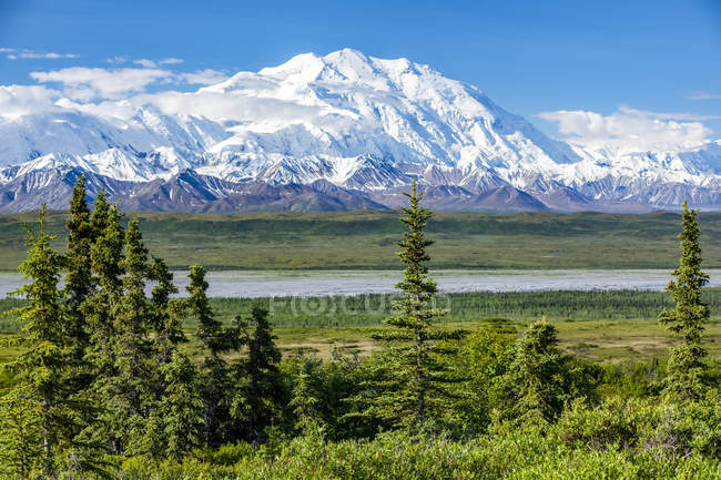 View of Denali from the park road while driving to Wonder Lake, Denali National Park and Preserve; Alaska, United States of America — Stock Photo