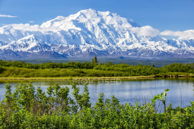 View of Denali and Reflection Pond taken from the park road while driving to Wonder Lake, Denali National Park and Preserve; Alaska, United States of America — Stock Photo