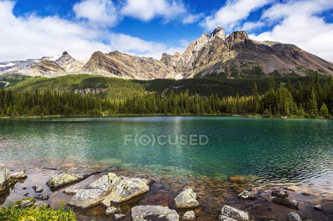 Lac alpin avec rivage rocheux et chaîne de montagnes au loin avec ciel bleu et nuages, parc national Yoho ; Field, Colombie-Britannique, Canada — Photo de stock