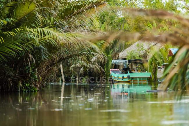 Barco en el río Mekong, delta del río Mekong; Vietnam - foto de stock