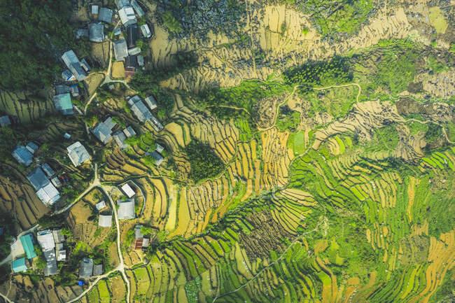 Vista drone de terraços de arroz; Ha Giang Province, Vietnã — Fotografia de Stock