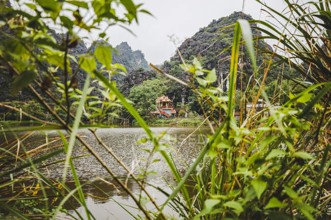 House and foliage along the Red River, Red River Delta; Ninh Binh, Vietnam — Stock Photo