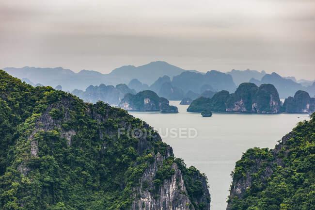 Formazioni calcaree coperte di acqua e fogliame, Ha Long Bay; Provincia di Quang Ninh, Vietnam — Foto stock