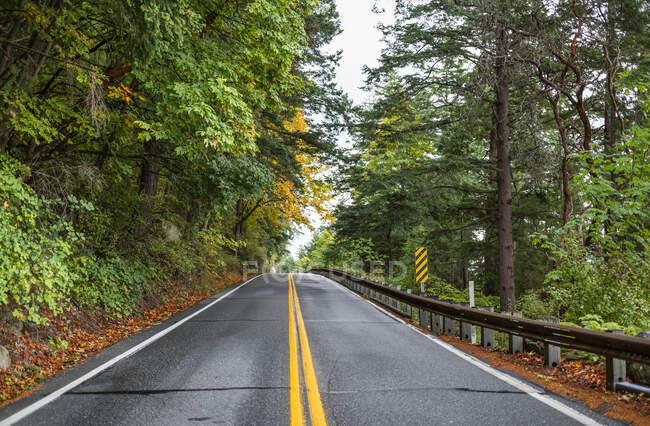 Ехать на юг по Чаканат Драйв из Беллингхема в октябрьский день с листьями на деревьях, пожелтевшими; Вашингтон, Соединенные Штаты Америки — стоковое фото