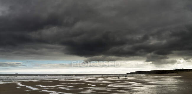 Dark storm clouds over the Atlantic ocean with two people and their dog walking on the wet sand beach in the foreground; South Shields, Tyne and Wear, England — Stock Photo