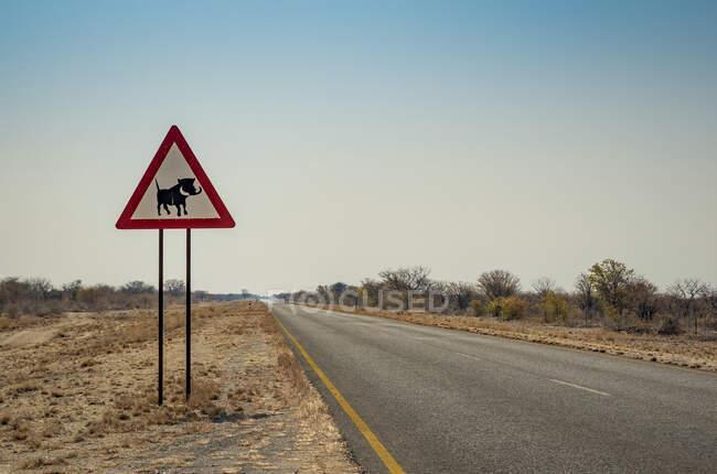 Señal de advertencia Warthog; Namibia - foto de stock