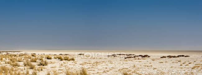Etosha pan, Etosha National Park; Namibia — Stock Photo