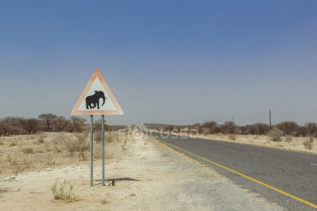 Elefante sinal de advertência em uma estrada; Namíbia — Fotografia de Stock