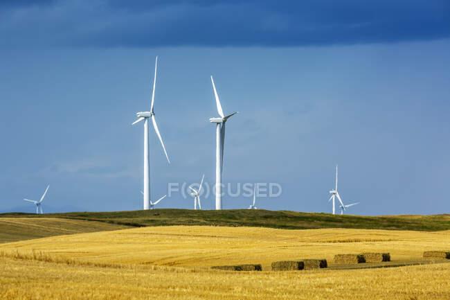 Grandes turbinas eólicas metálicas em colinas ondulantes com céu azul, ao norte de Waterton; Alberta, Canadá — Fotografia de Stock