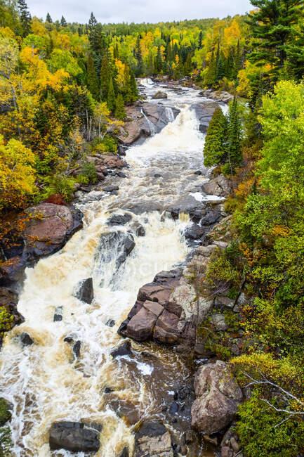 Береговая река, каскад осенних цветов; Миннесота, Соединенные Штаты Америки — стоковое фото