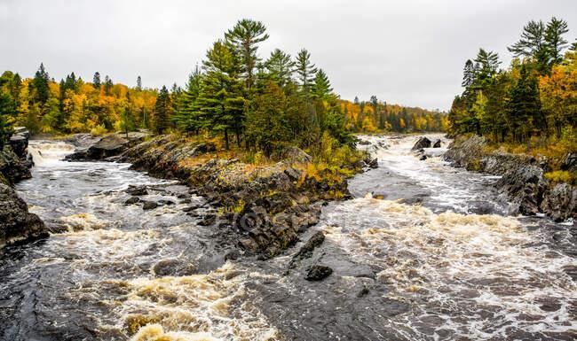 Река Сент-Луис, протекающая каскадом через государственный парк Джей Кук осенью; Миннесота, Соединенные Штаты Америки — стоковое фото