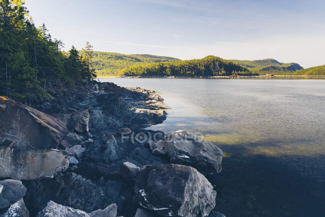 Национальный парк Бик, Квебек, Канада — стоковое фото