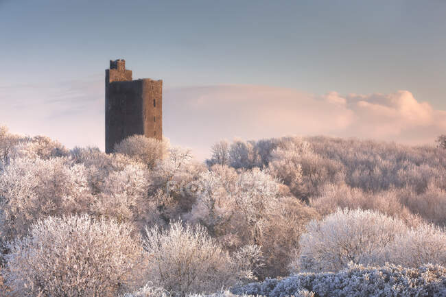 Kilworth Castle, an old Castle ruins overlooking a snow-covered forest in winter at sunrise; Kilworth, County Cork, Ireland — Stock Photo