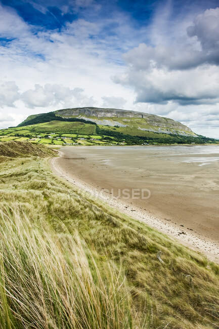 Irish coastline with beach grass and receded tide, with a plateau mountain and cliffs in the background during summer; Strandhill, County Sligo, Ireland — Stock Photo