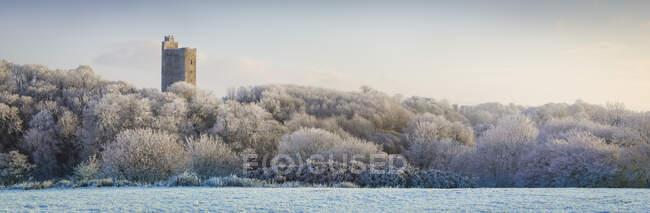 Килвортский замок, старый замок руины с видом на заснеженный лес и поле зимой на восходе солнца, сшитые композитные панорамы; Килворт, графство Корк, Ирландия — стоковое фото