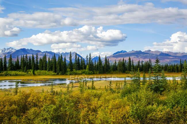 Прекрасний вигляд Аляскинського хребта. Понти, осінній колір і величні гори і долини; Аляска, Сполучені Штати Америки — стокове фото
