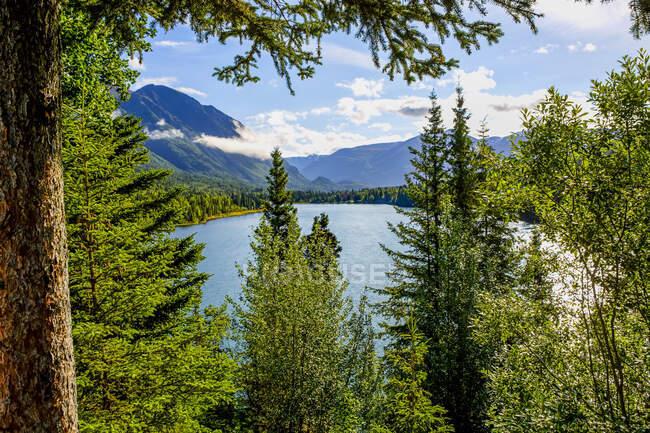 Озеро Кенай, верховья реки Кенай, Аляска, США — стоковое фото
