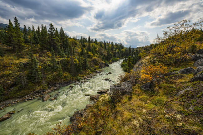 Река Тутши течет на север; Каркросс, Юкон, Канада — стоковое фото