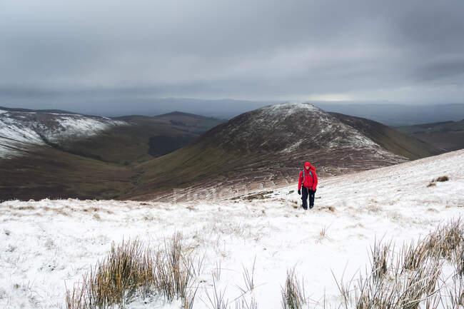 Самотня жінка, яка подорожує по червоній куртці, піднімається на вкриту снігом гору взимку в похмурий день, гори Галті; графство Тіпперері, Ірландія. — стокове фото