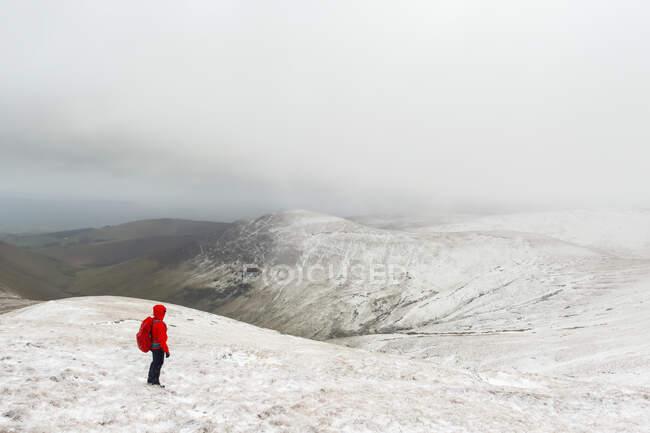 Senderista con chaqueta roja en una montaña cubierta de nieve en invierno con mal tiempo, Galty Mountains; Condado de Tipperary, Irlanda - foto de stock