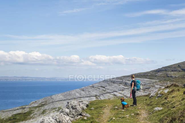 Жінка і собака йдуть по стежці в Burren дивлячись на море в сонячний літній день; Fanore, County Clare, Ireland — стокове фото