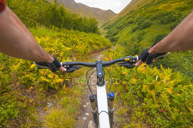 POV of a man riding his mountain bike down the Devils Pass Trail on a sunny summer day in South-central Alaska; Alaska, United States of America — Stock Photo