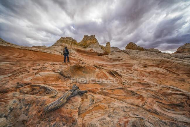 Caminhante sobre as incríveis formações rochosas e arenosas de White Pocket; Arizona, Estados Unidos da América — Fotografia de Stock
