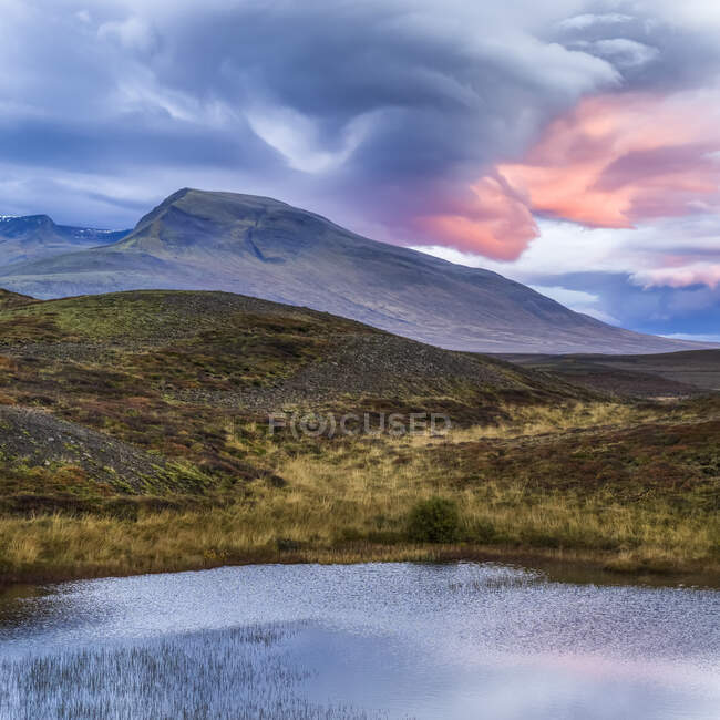 Landscape in Northern Iceland with glowing pink clouds at sunset; Hunaping vestra, Northwestern Region, Iceland — Stock Photo