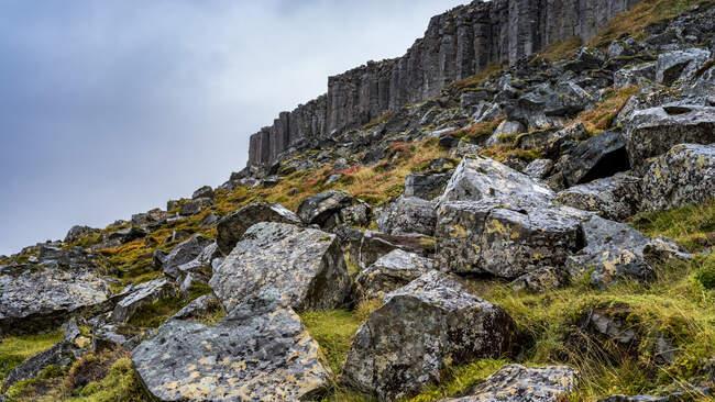 Gerduberg scogliera di dolerite, una roccia basaltica a grana grossa, situata sulla penisola occidentale di Snaefellsnes; Eyja- og Miklaholtshreppur, Regione occidentale, Islanda — Foto stock