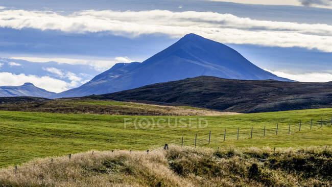 Campo de hierba en primer plano con picos de montaña en la distancia; Skagafjordur, Región Noroeste, Islandia - foto de stock