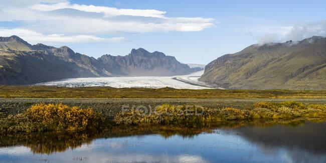 Un glaciar que yace entre montañas con follaje de color otoñal en primer plano; Hornafjordur, Región Oriental, Islandia - foto de stock