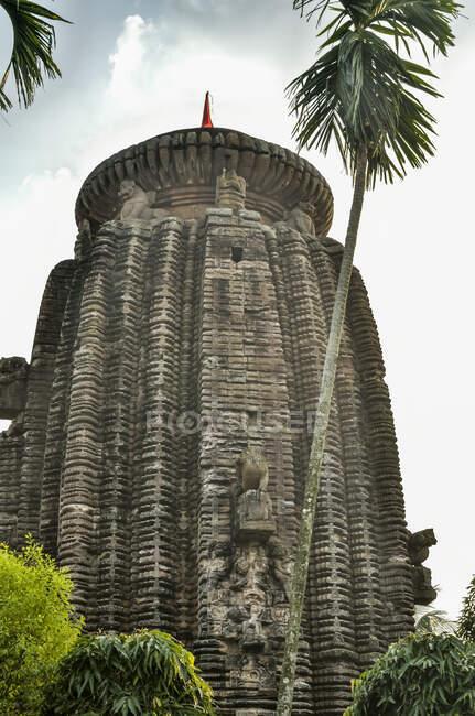 Chitrakarini Tempel, Lingaraja Tempel Komplex; Bhubaneswar, Odisha, Indi — Stockfoto