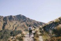 Резервного зору юнак похід через полонини Кук, Національний парк в Новій Зеландії — стокове фото