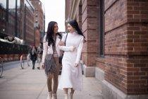 Две красивые азиатские женщины вместе в Нью-Йорке, США — стоковое фото