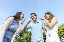 Gruppo di giovani amici asiatici divertirsi all'aperto — Foto stock